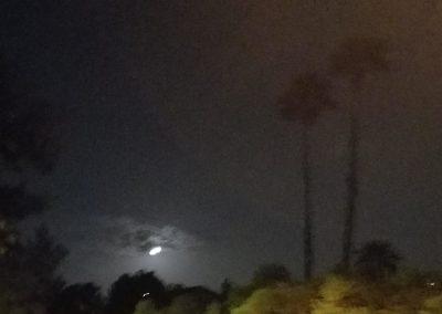 desert moon pictures